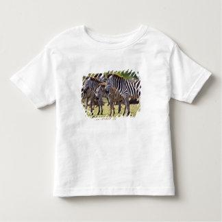 Zebras herding in the fields of the Maasai Mara Toddler T-shirt