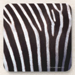 zebra's hide beverage coaster