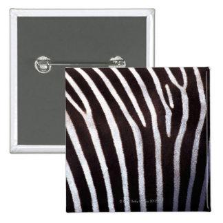 zebra's hide pinback button