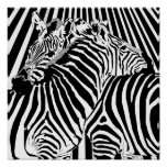 Zebras Hugging Poster for Binary Options Trading