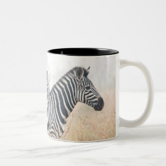 Zebras in early morning dust, Kruger National 2 Two-Tone Coffee Mug