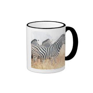Zebras in early morning dust, Kruger National 2 Ringer Coffee Mug