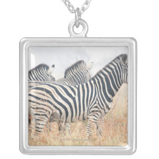 Zebras in early morning dust, Kruger National 2 Silver Plated Necklace