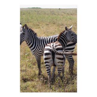 Zebras in Nairobi Kenya Stationery