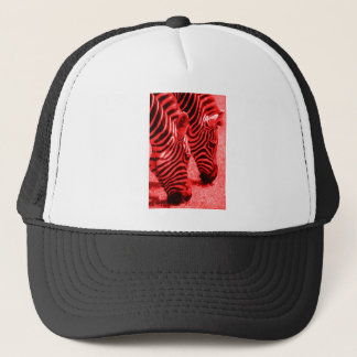 Zebras in Red Trucker Hat