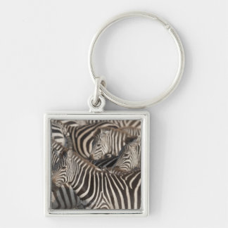 Zebras, Kenya, Africa Silver-Colored Square Keychain