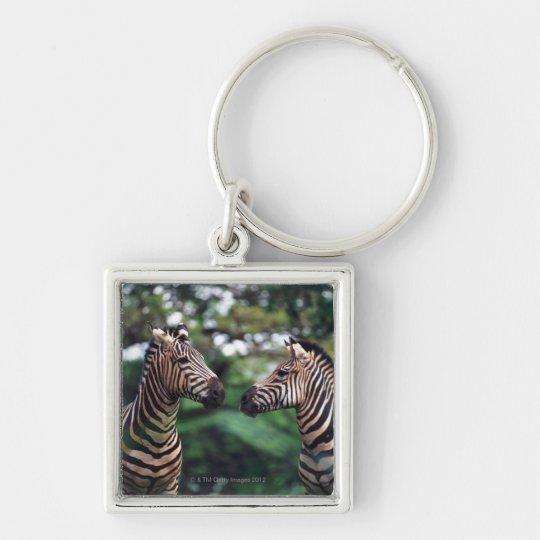 zebras keychain