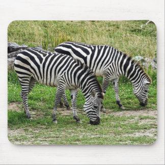 Zebras Mousepad