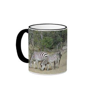 Zebras mug