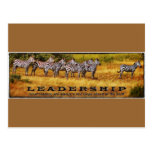 Zebras on Leadershp Postcard