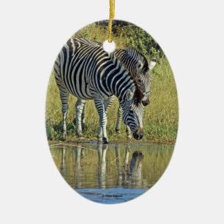 Zebras Reflected Ceramic Ornament