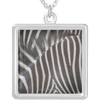 Zebras Silver Plated Necklace