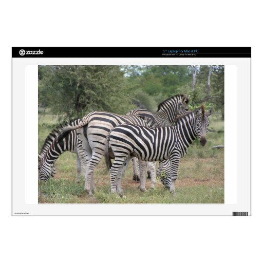 "Zebras Skin For 17"" Laptop"