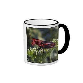 Zebug mug