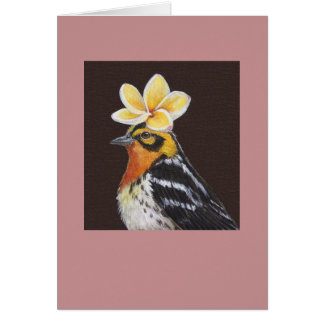 Zed the blackburnian warbler card