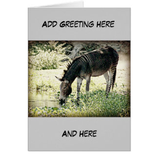 """Zedonk"" Greeting Card"
