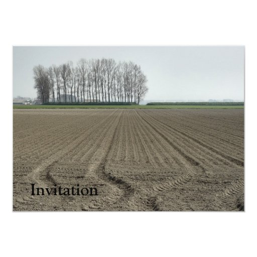 Zeeland-Just Sowed 5x7 Paper Invitation Card