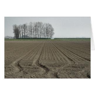 Zeeland-Just Sowed Card