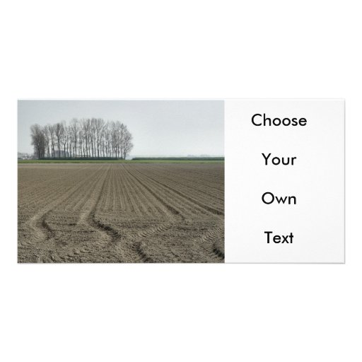 Zeeland-Just Sowed Customized Photo Card