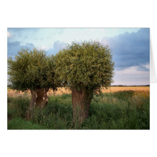 Zeeland-Two Willow Trees Card