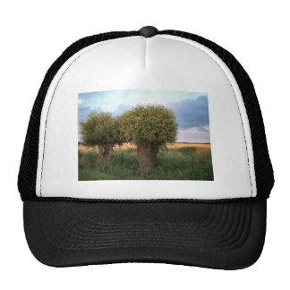 Zeeland-Two Willow Trees Mesh Hats
