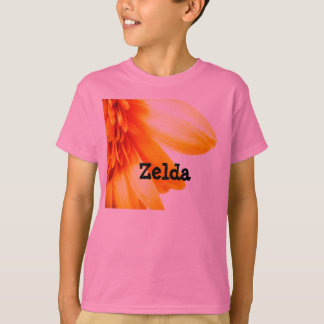 Zelda Playera