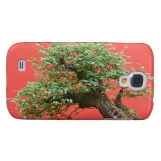Zelkova bonsai tree samsung galaxy s4 case