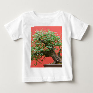 Zelkova bonsai tree tee shirts