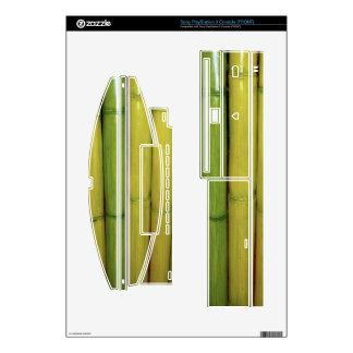 Zen Asian Green Bamboo Stalks Botanical Photo PS3 Decal