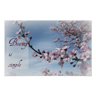 Zen- Beauty is Simple Cherry Blossom Poster