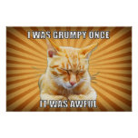 Zen Cat Poster