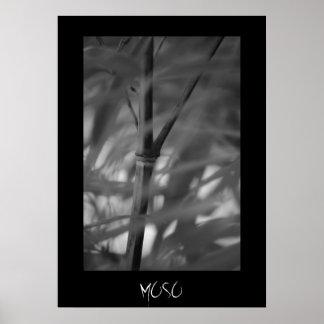 Zen del bambú de Moso Poster