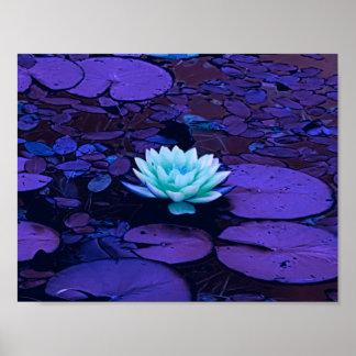 Zen floral de la charca de la turquesa azul póster
