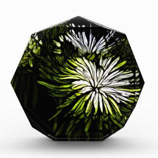 Zen floral Lime green white Chrysanthemum Award