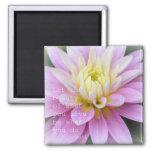 Zen Flower- Dahlia Magnet Rumi Quote