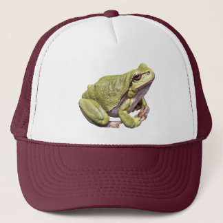 Zen Frog Green Tree Frog Hat
