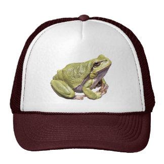 Zen Frog Green Treefrog Meditation Pose Trucker Hat