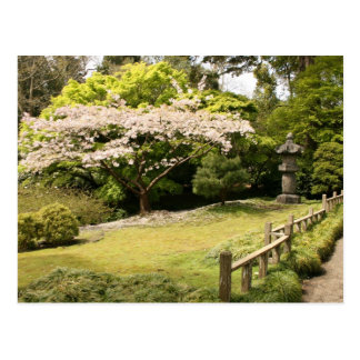 Zen Garden in Spring Postcard