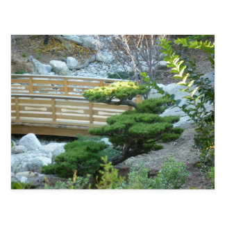 Zen Garden Postcard