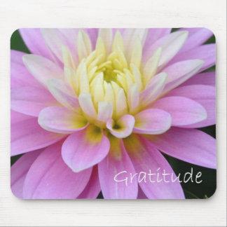 Zen Gratitude Mouse Pads