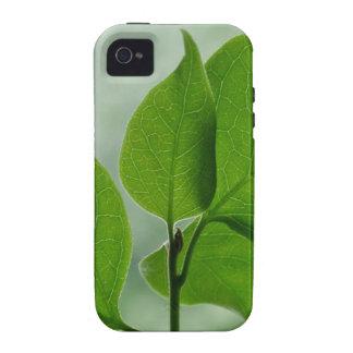 Zen Green Case-Mate iPhone 4 Covers