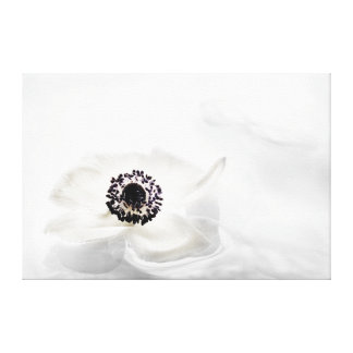 Zen High Key White Anemone on Water Background Canvas Print