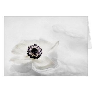 Zen High Key White Anemone on Water Background Card