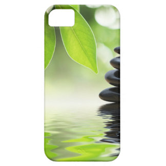 Zen iPhone 5 Carcasas