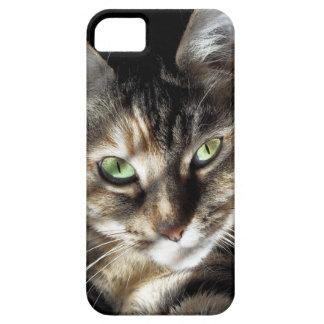 Zen Kitty iPhone SE/5/5s Case