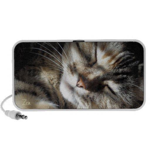 Zen Kitty Mp3 Speakers