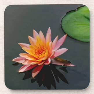 Zen Lilypad Beverage Coaster