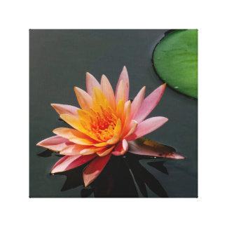 Zen Lilypad Impresión En Lienzo