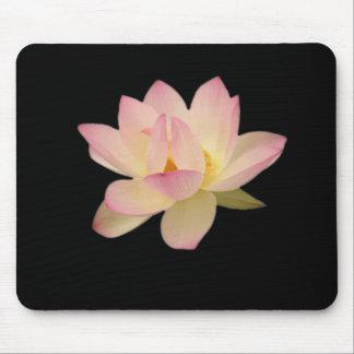 Zen Mousepad de la sensación