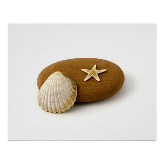Zen Nature Sea Shell Star fish Pebble Poster